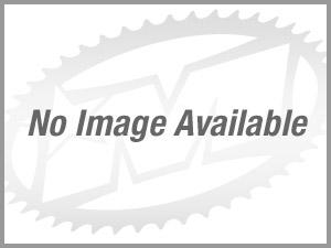 2006款哈雷戴维森Sportster 1200 Roadster - XL1200R